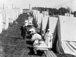 """""""Covid-19 & the Sun: a lesson from the 1918 Influenza Pandemic"""""""