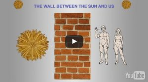"""Why the Sun Is Necessary for Optimal Health"""