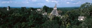 """'Megalopolis' of 60,000 Ancient Mayan Structures Found"""