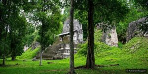 """In Guatemala, the Maya World Untouched for Centuries"""